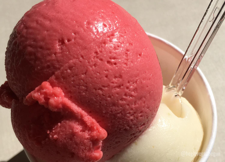 helado vegano oporto
