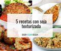 recetas soja texturizada